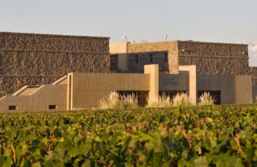 Séptimo Winery